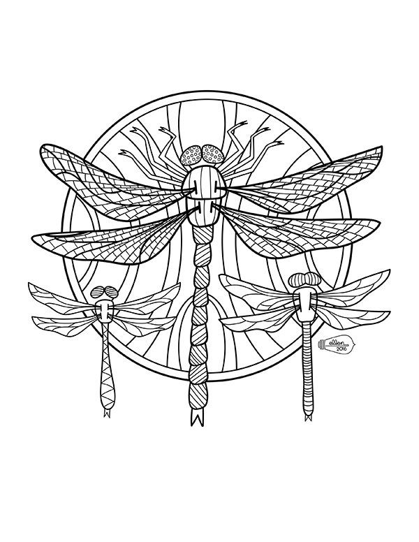 Dragonflies Adult Coloring Page Digital Stamp Coloring Pages