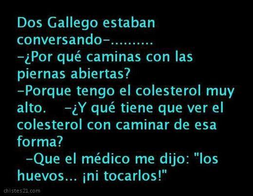 De Gallegos Funny Chistes Chistes Humor Chistes Bobos