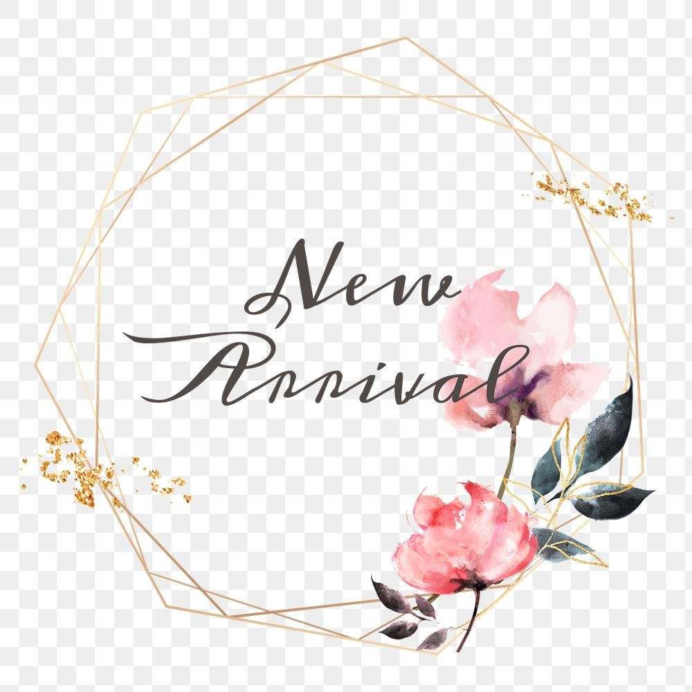 New Arrival Png Floral Frame Free Image By Rawpixel Com Adj