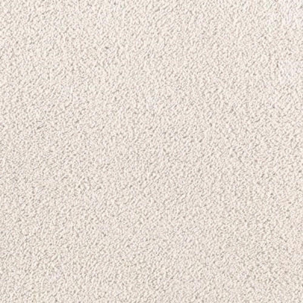 LifeProof Carpet Sample Wesleyan II Color Whitewash