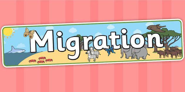 Migration Display Banner