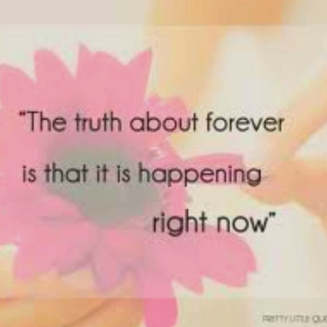 The Truth About Forever Thank You God For Sarah Dessen Lets
