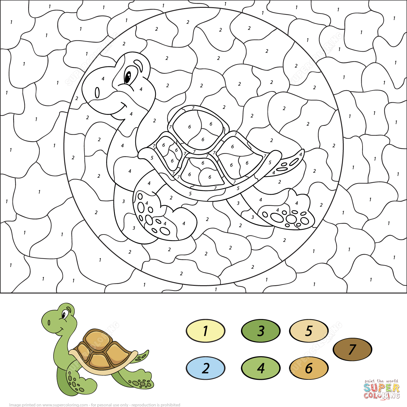 Sea Turtle Color Number Printable Coloring Pages Click