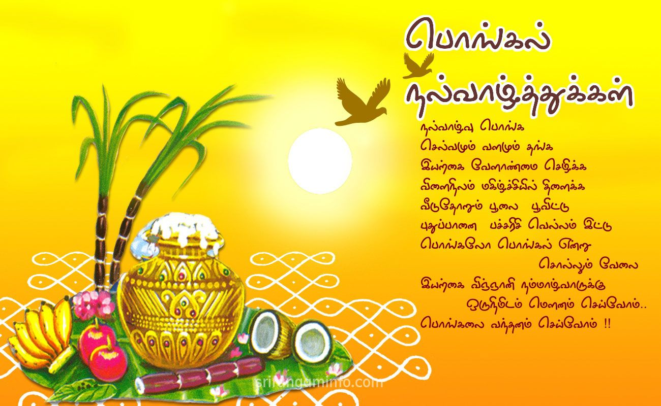 Pongal Greetings Pongal Wishes Pinterest Happy Pongal Happy