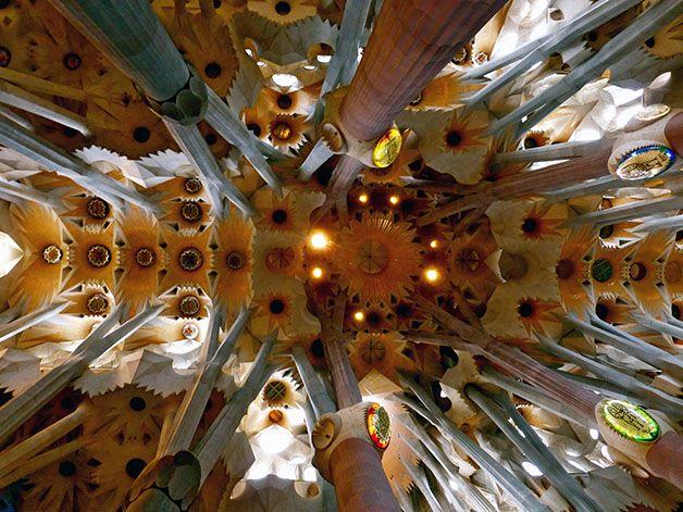 Lumière Sagrada Familia Piliers En Forme D Arbres Sagrada Familia Barcelone Plan De Barcelone