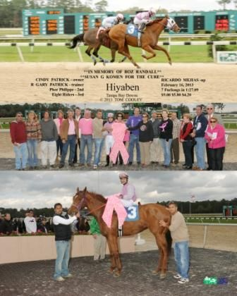 In Memory of Dr. Roz Randall- sponsored by Susan G. Komen For the Cure  Hiyaben wins with Ricardo Mejias in the irons...traveling the 7-furlong distance in a time of 1:27.09.  Hiyaben is owned by Cindy Patrick and is trained by R. Gary Patrick.  Congratulations to the winning connections of Hiyaben!   (February 16, 2013)