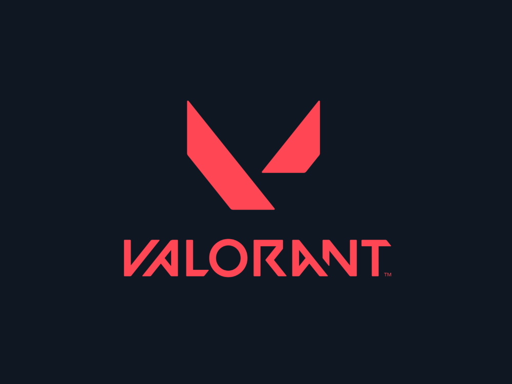 Valorant Portfolio Design Dribbble My Design