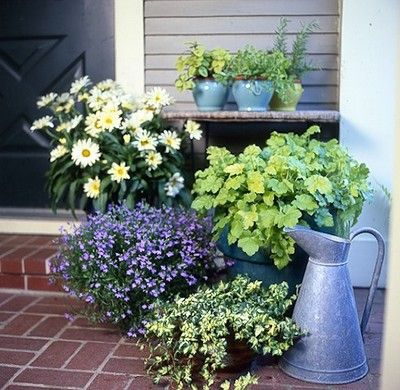 Casual Container Garden For The Front Porch Cute And Easy From Toby Fairleys Blog