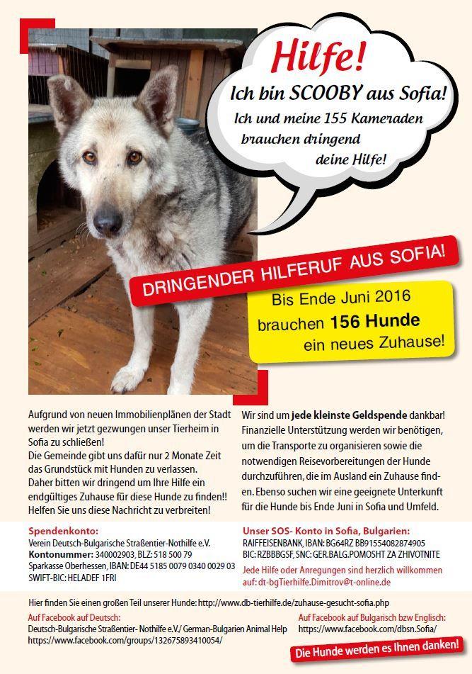 Gut Aiderbichl Salzburg Gut Aiderbichl Michael Aufhauser Tiere