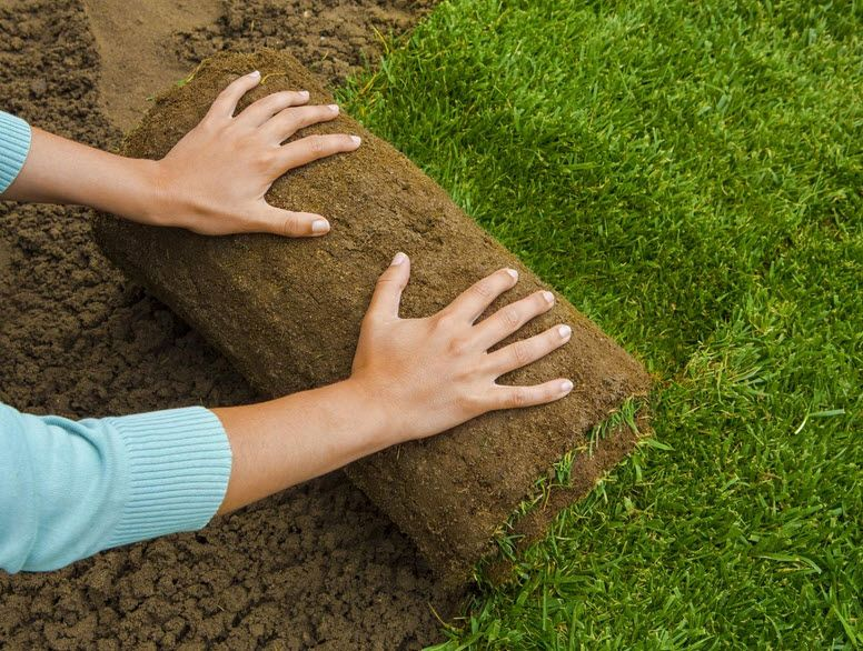 Affordable Turf Laying Service in Sydney offers