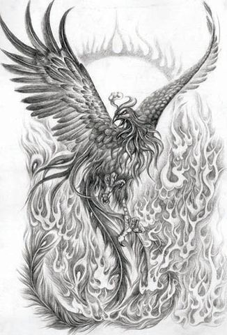 phoenix bird rising from the ashes - Google Search ...