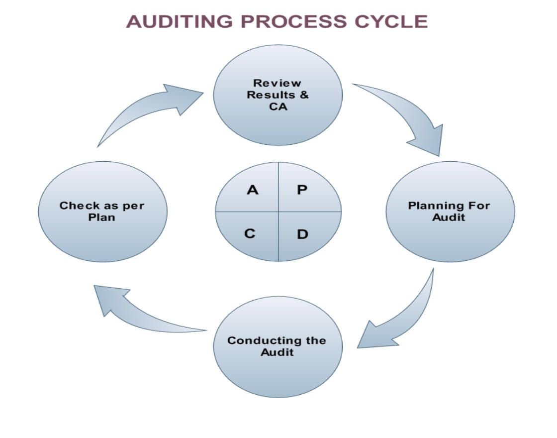 Audit process cycle by linkers audit services