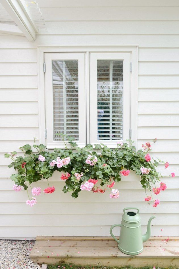Today, window flower boxes continue to be embraced for their timeless charm and hard-to-resist curb appeal. They add depth to structures and provide an opportunity to incorporate greenery and color. Are you ready to get your hands a little dirty? Read on for seven inspiring ideas. #hunkerhome #flowerboxes #window #windowideas #flowers