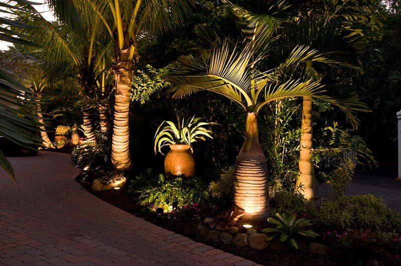 Tropical-Landscape-Design-Ideas-Florida   Landscape Design   Florida on florida backyard landscaping design ideas, florida tropical landscape design, florida residential landscape design,