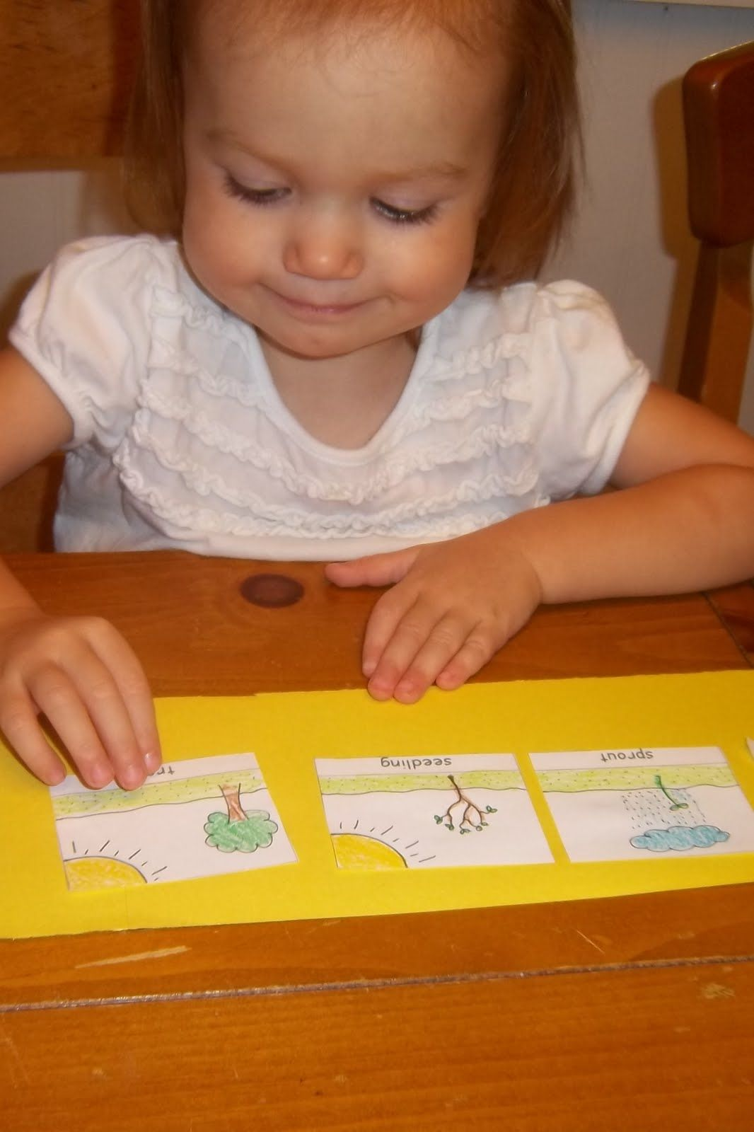 Toddler Boredom Busters Apple Cycle Sequencing