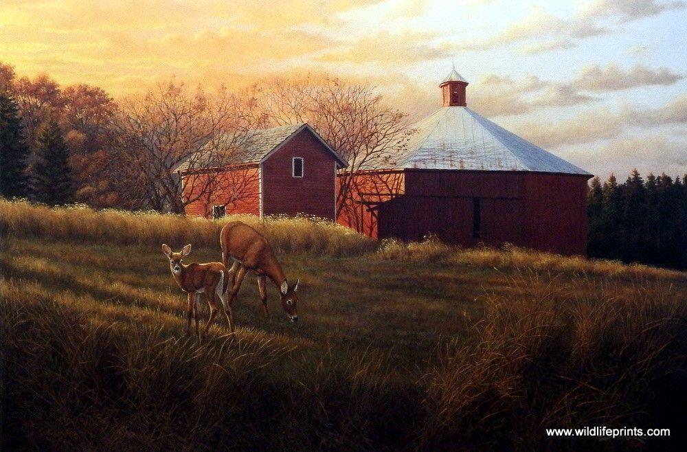 Derk Hansen Autumn Sunset Paintings Deer Elk Moose