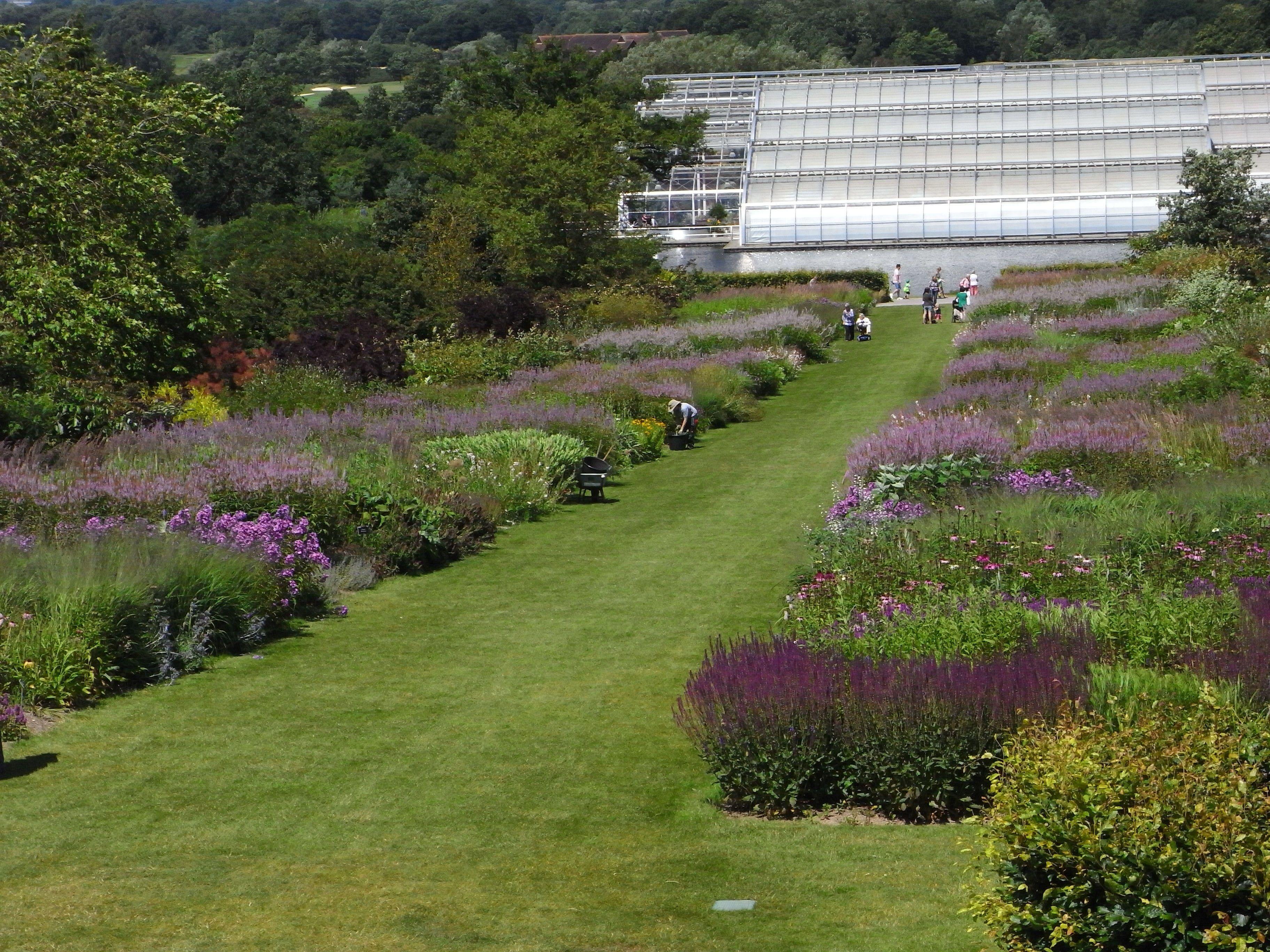Oudolf perennial borders, RHS Wisley. | Garden design ...