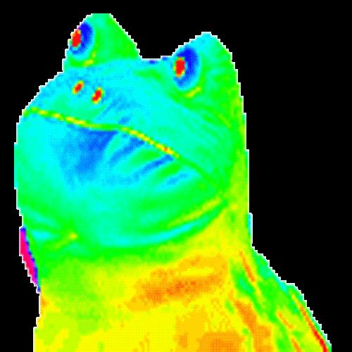 Hyper Mlg Frog Transparent Png Stickpng Frog Meme Dark Humour Memes Gif Dance