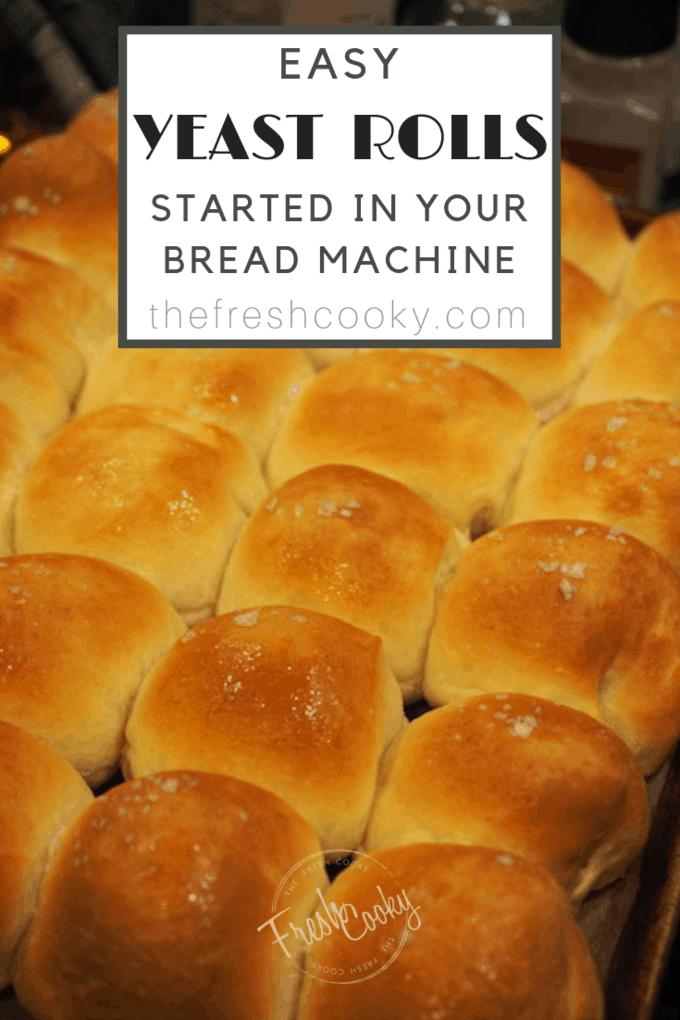 Easy Yeast Rolls Recipe Easy Yeast Rolls Yeast Rolls Bread