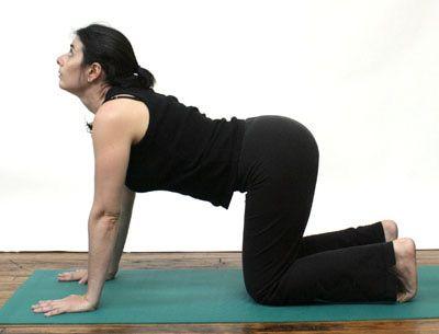 how to do catcow stretch chakravakasana in yoga  cow