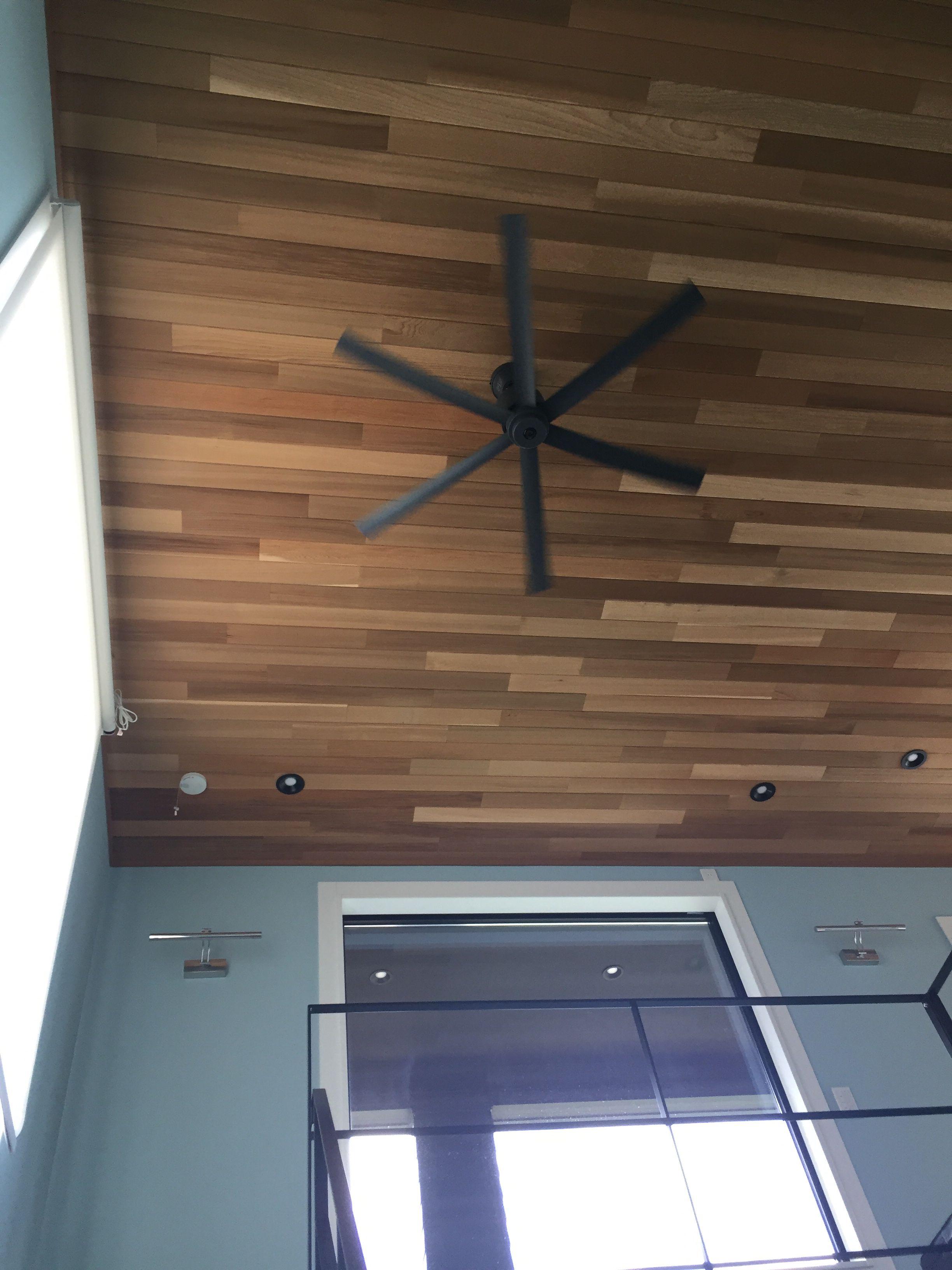 ブルーの壁紙との相性がいい レッドシダー 天井 ゼロキューブ マリブ