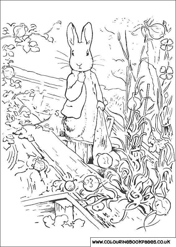 Printable Peter Rabbit Pages 17 | rabbit about | Pinterest | Pintar ...