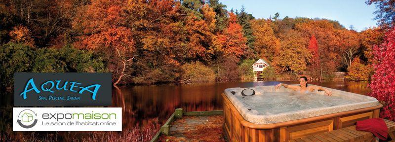 piscine extérieur - piscines prix terrasse piscine - renovation