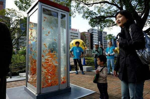 Public phones are outdated due to cellular phones so the phone booths were converted to Aquariums in Osaka, Japan