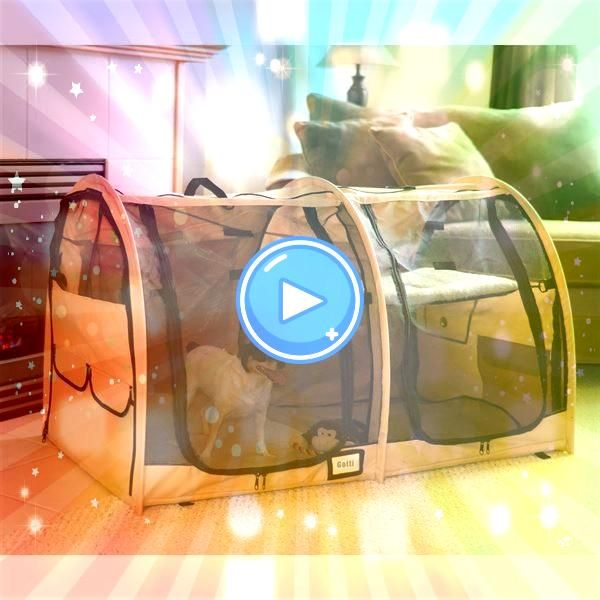 dog kennels for the pet and pet owner on the go  Portable dog kennels for the pet and pet owner on the go Portable dog kennels for the pet and pet owner on the go  Portab...
