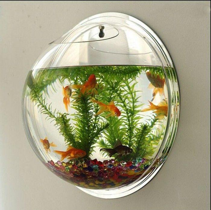 Goldfische aquarium einrichtung aquarium deko mehrfarbige for Aquarium goldfische