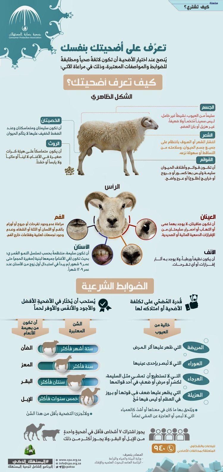 Pin By El3adama On Informations Islamic Information Islam Muslim Islam