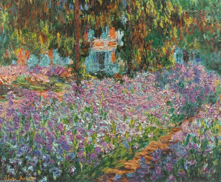 Claude irises in garden claude