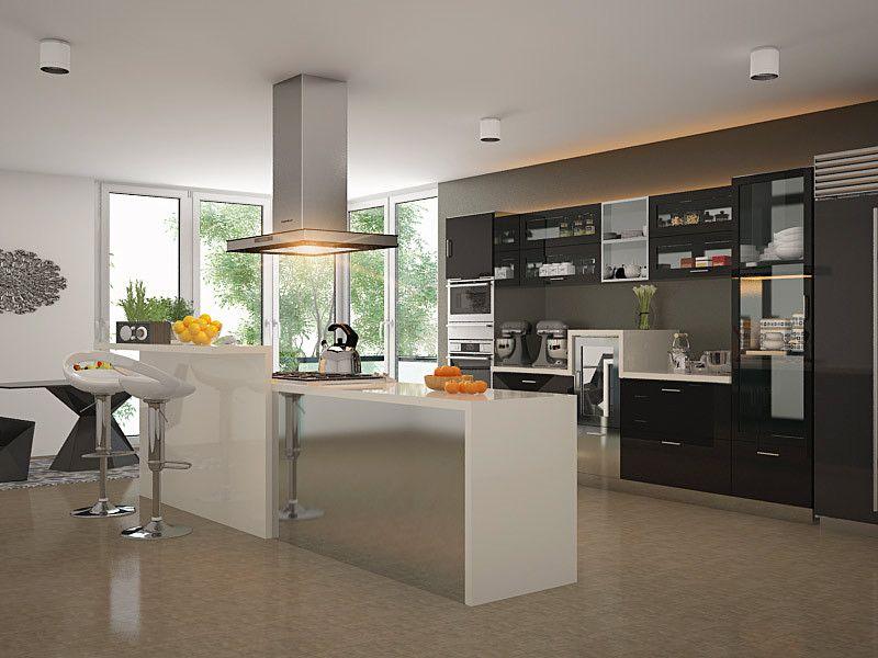 larch parallel modular kitchen parallelmodularkitchen parallelkitchendesign on kitchen interior parallel id=11999