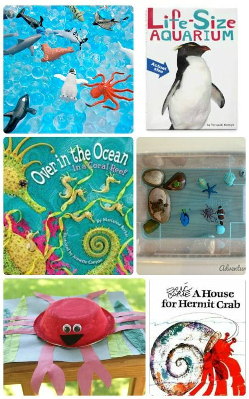 8 Awesome Ocean Animal Books Crafts With Images Ocean Books
