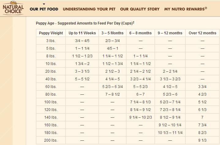 How Much To Feed My Puppy Puppy Feeding Guide Feeding Puppy