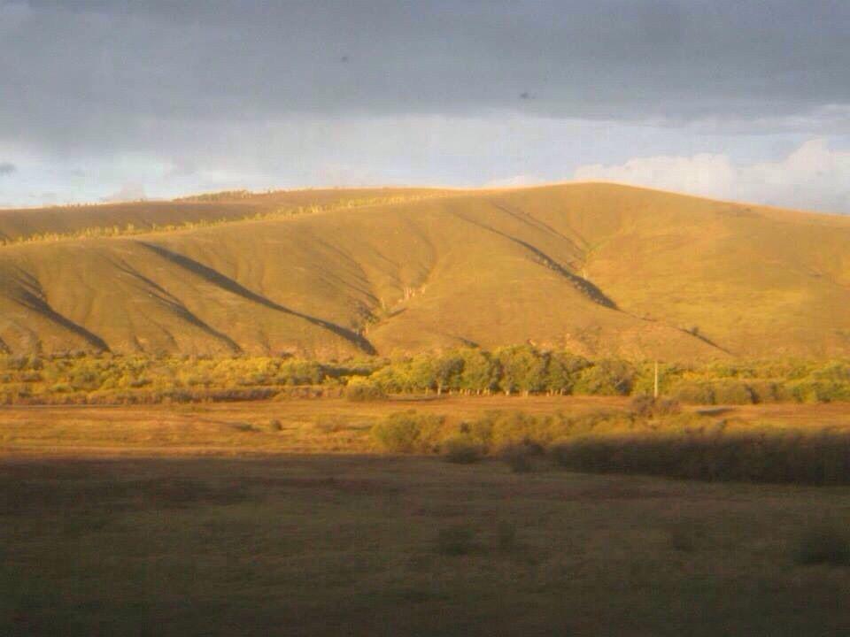 黄金の秋のシベリア