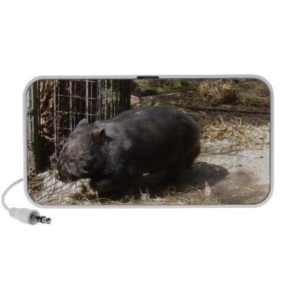 Wild For Wombats Travel Speaker
