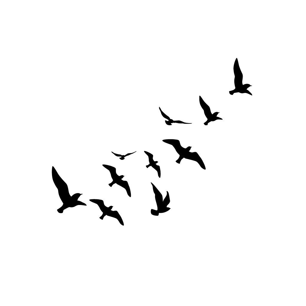Free Like A Bird Bird Silhouette Tattoos Flying Bird Drawing Fly Drawing