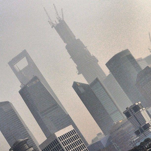 #shanghai #tea #blacktea #josephwesleytea #jwtea