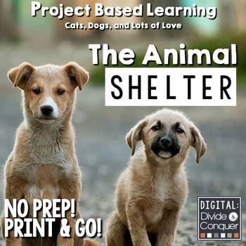 Pin On Pets Teaching Unit