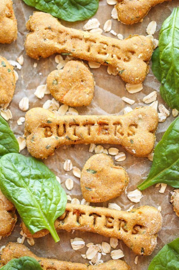 35 Homemade Pet Recipes For Dogs and Cats Dog biscuit
