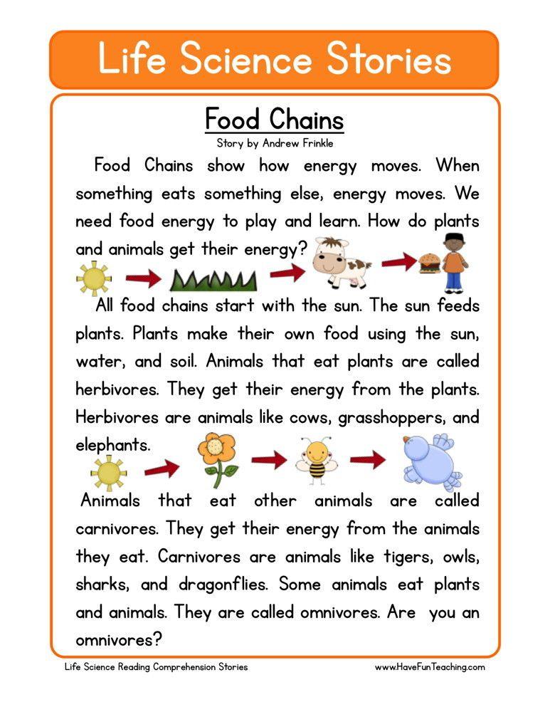 Reading Comprehension Worksheet Food Chains Science