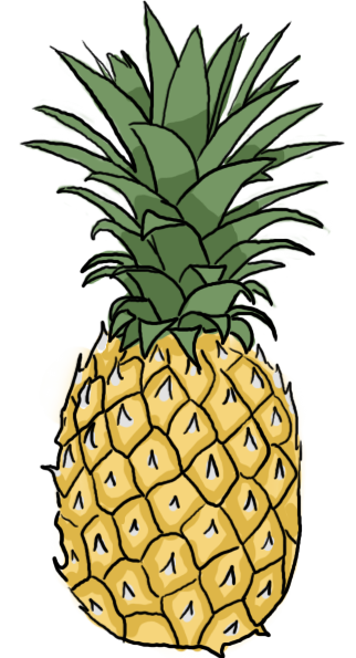 pineapple_by_maddie_of_the_kawaii-d3482oq.png (322×595 ...