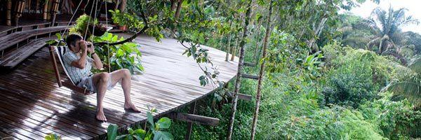 Balcony with treetop views - Costa Rica