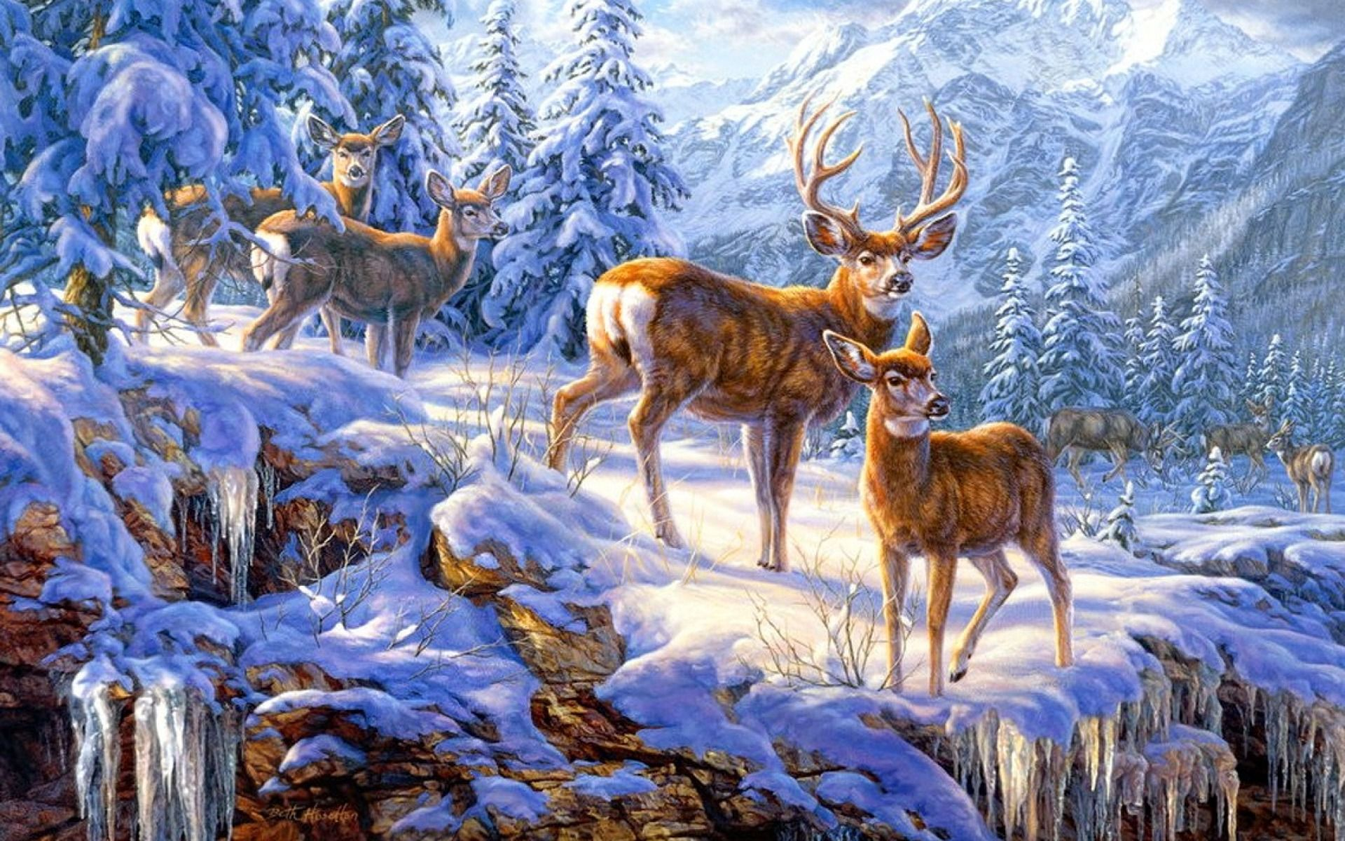 Deer Wallpapers Android Apps on Google Play × Pictures Of