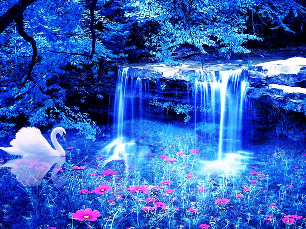 magical wallpapers for desktop - Google Search | Swans ...