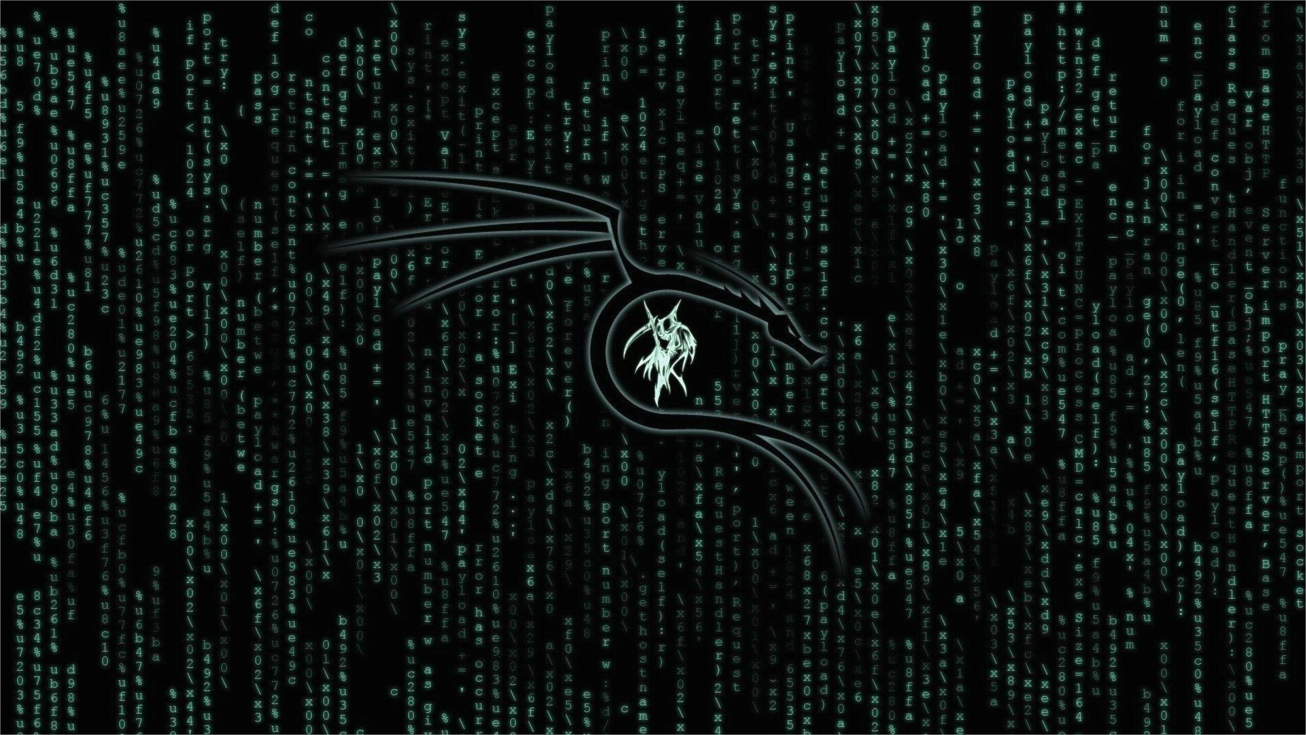 Kali Linux Wallpaper 4k In 2020 Black Hd Wallpaper Wallpaper Downloads Hd Wallpaper