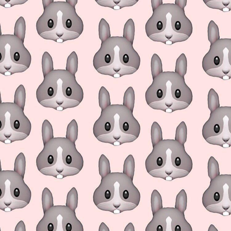 cutie rabbits #cutie #cute #rabbit #rabbits #f4f #follow4follow #wallpaper #fff #teenkp #l4l #likesforlikes #like4like by teenkp