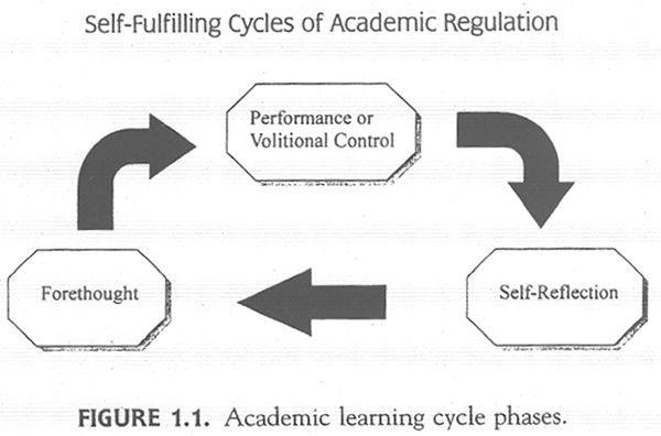 self regulated learning strategies pdf