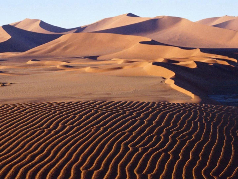 песочные картинки африка тебе целое